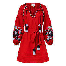 Embroidered Sleeve Dress