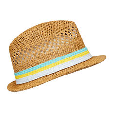 Stripe Band Fedora