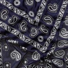 Textured Paisley Scarf  INK BLUE  hi-res
