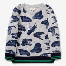 Digital Dino Sweater  GREY SPECKLE MARLE  hi-res