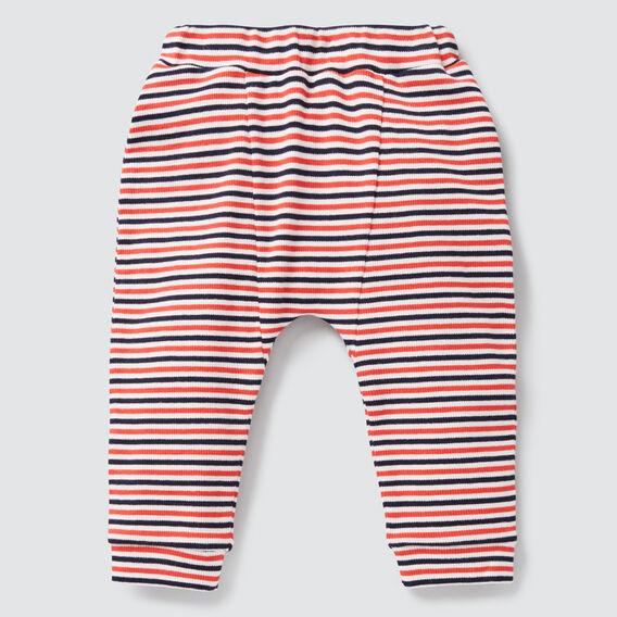 Spliced Stripe Rib Legging  MULTI  hi-res