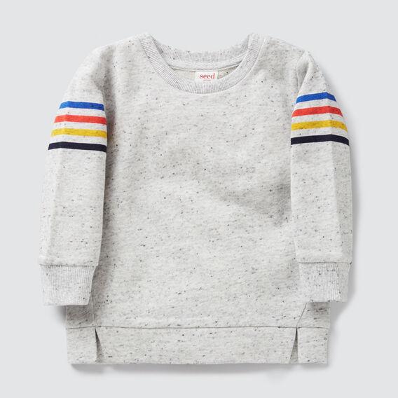 Stripe Sleeve Crew Sweater  CLOUDY MARLE  hi-res