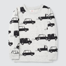 Car Yardage Sweater  CLOUDY MARLE  hi-res