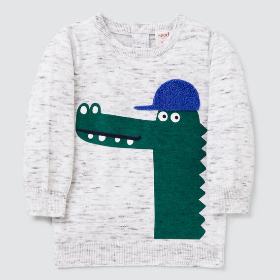 Crocodile Crew Knit  VINTAGE SPACE DYE  hi-res