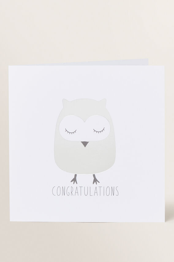 Large Owl Card  MULTI  hi-res