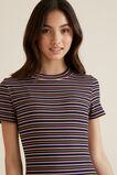 Rib Stripe Dress  MULTI  hi-res