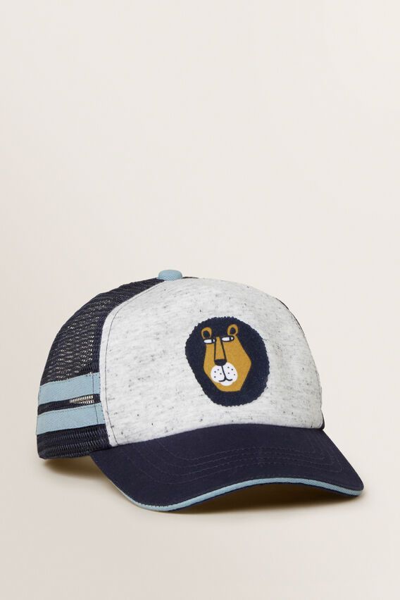 Lion Cap  MULTI  hi-res