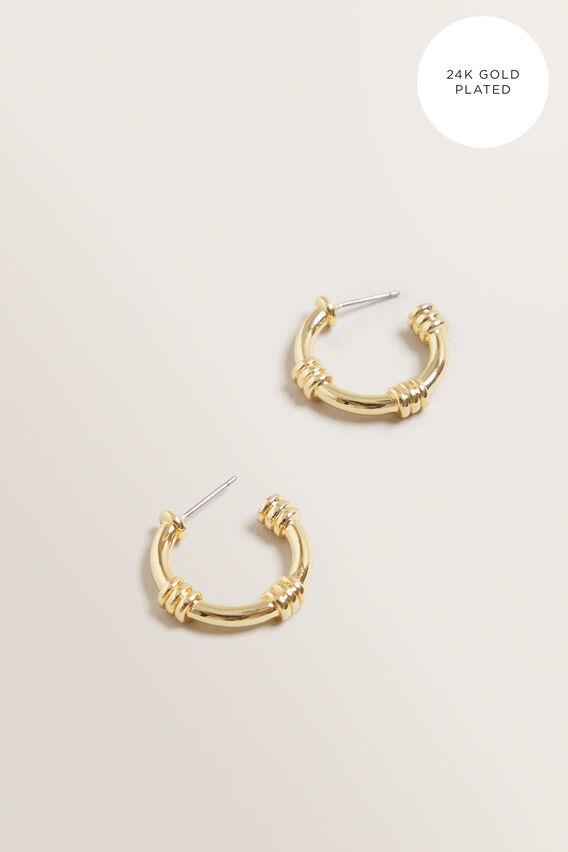 Fine Detail Hoops  GOLD  hi-res