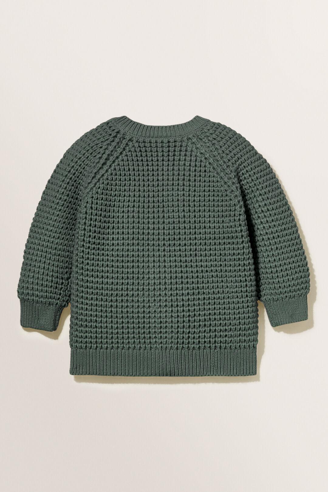 Raglan Knit Cardigan  CLOVER  hi-res