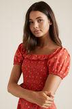 Paisley Dress  HAVANNA  hi-res