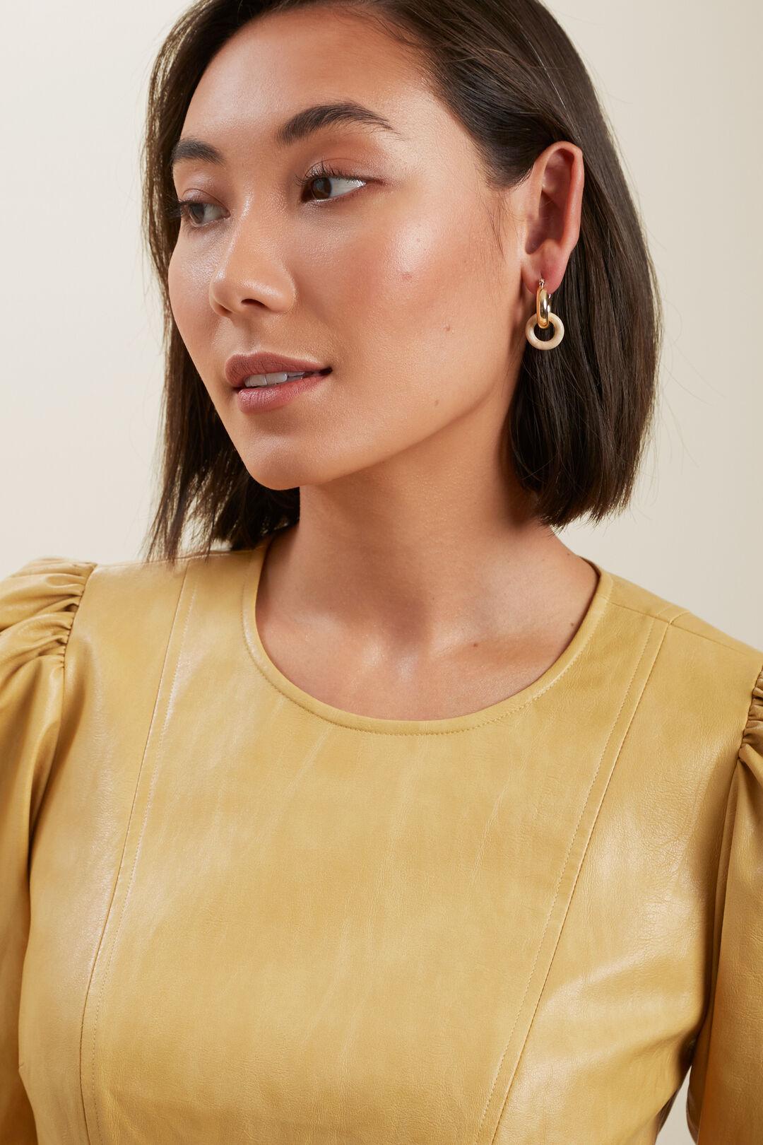Resin Hoop Earrings  GOLD  hi-res