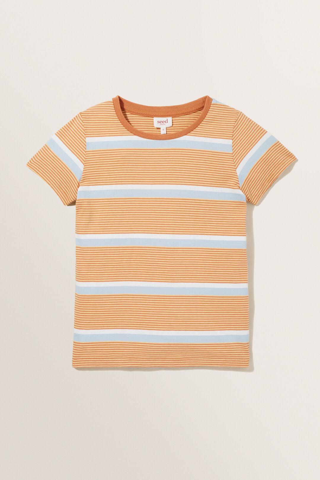 Stripe Tee  AMBER  hi-res