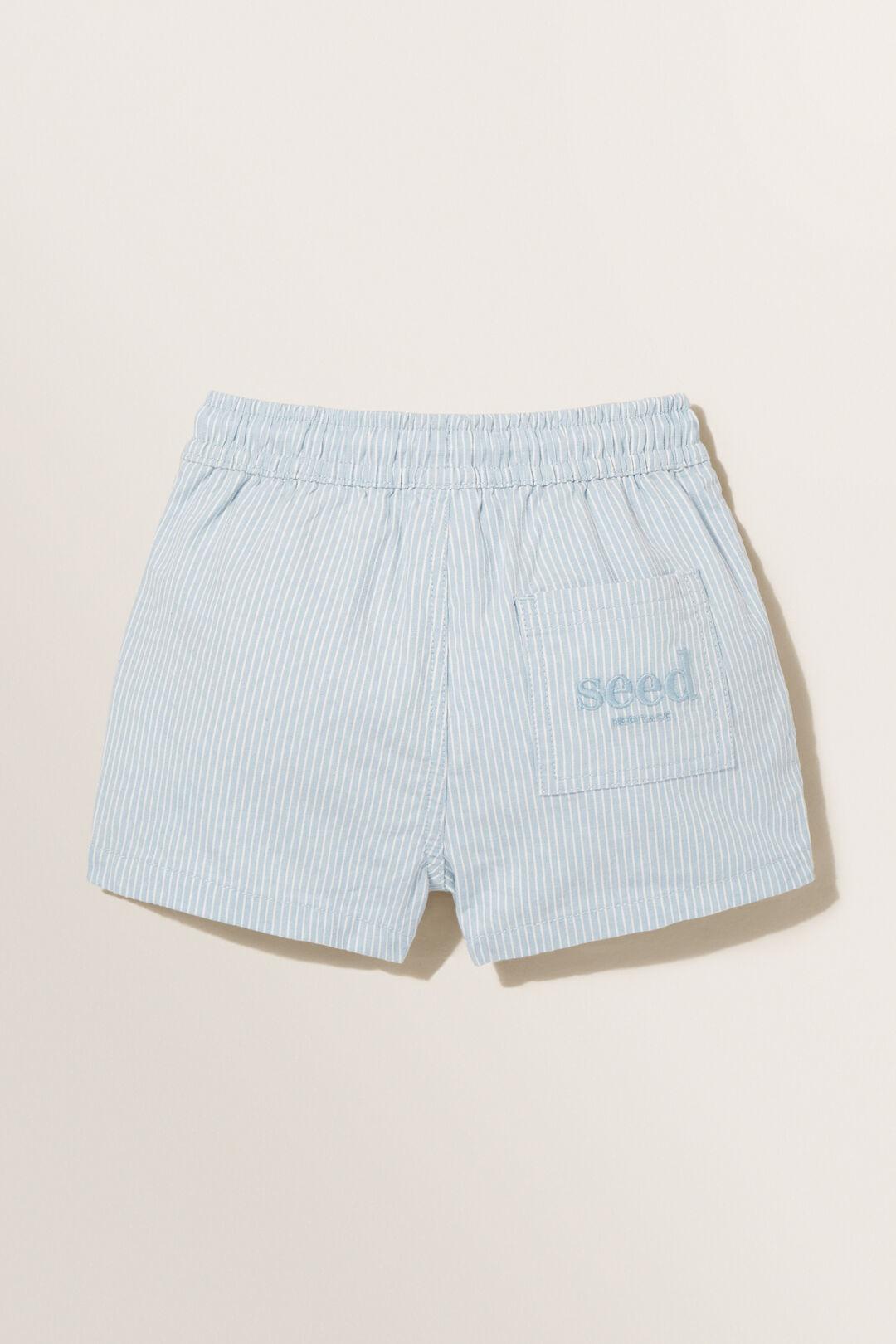 Logo Shorts  Blue Stripe  hi-res