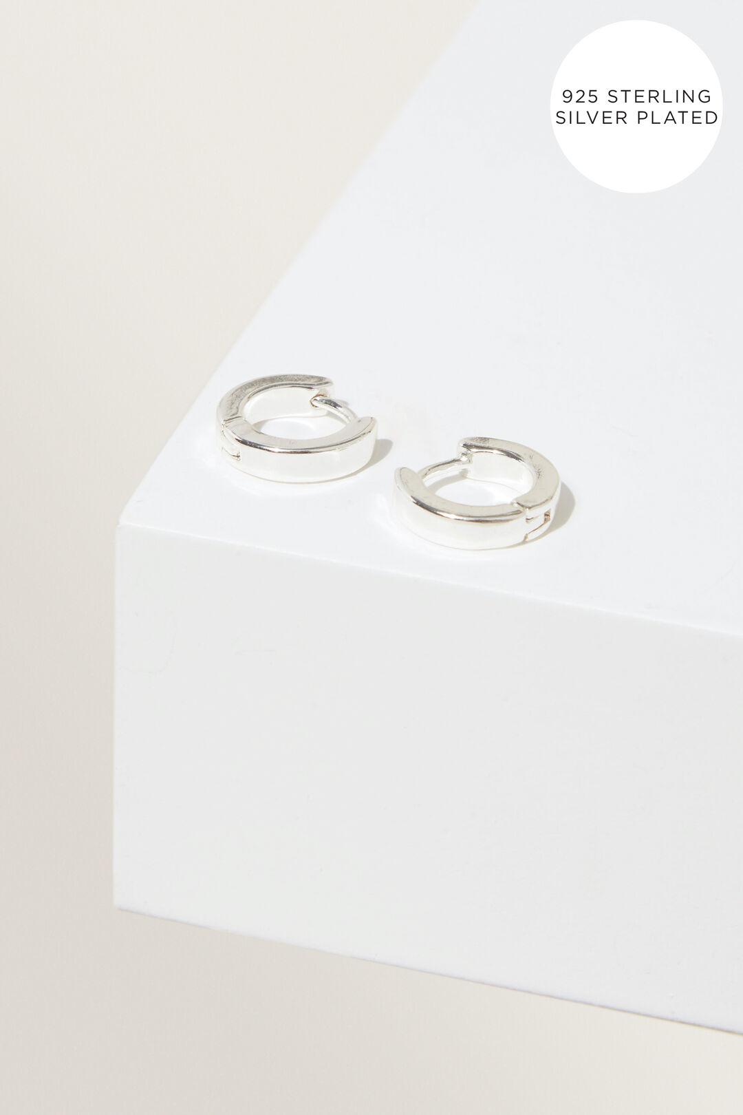Fine Earrings  Silver  hi-res