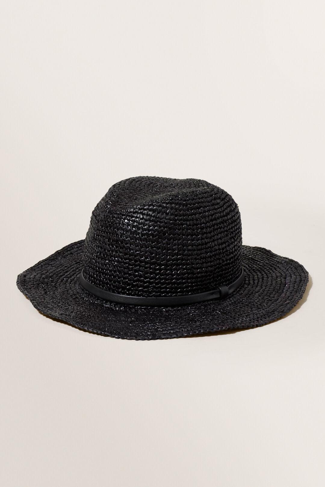Essential Panama Hat  True Black  hi-res
