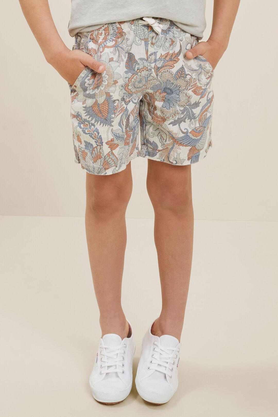 Linen Shorts  Multi  hi-res