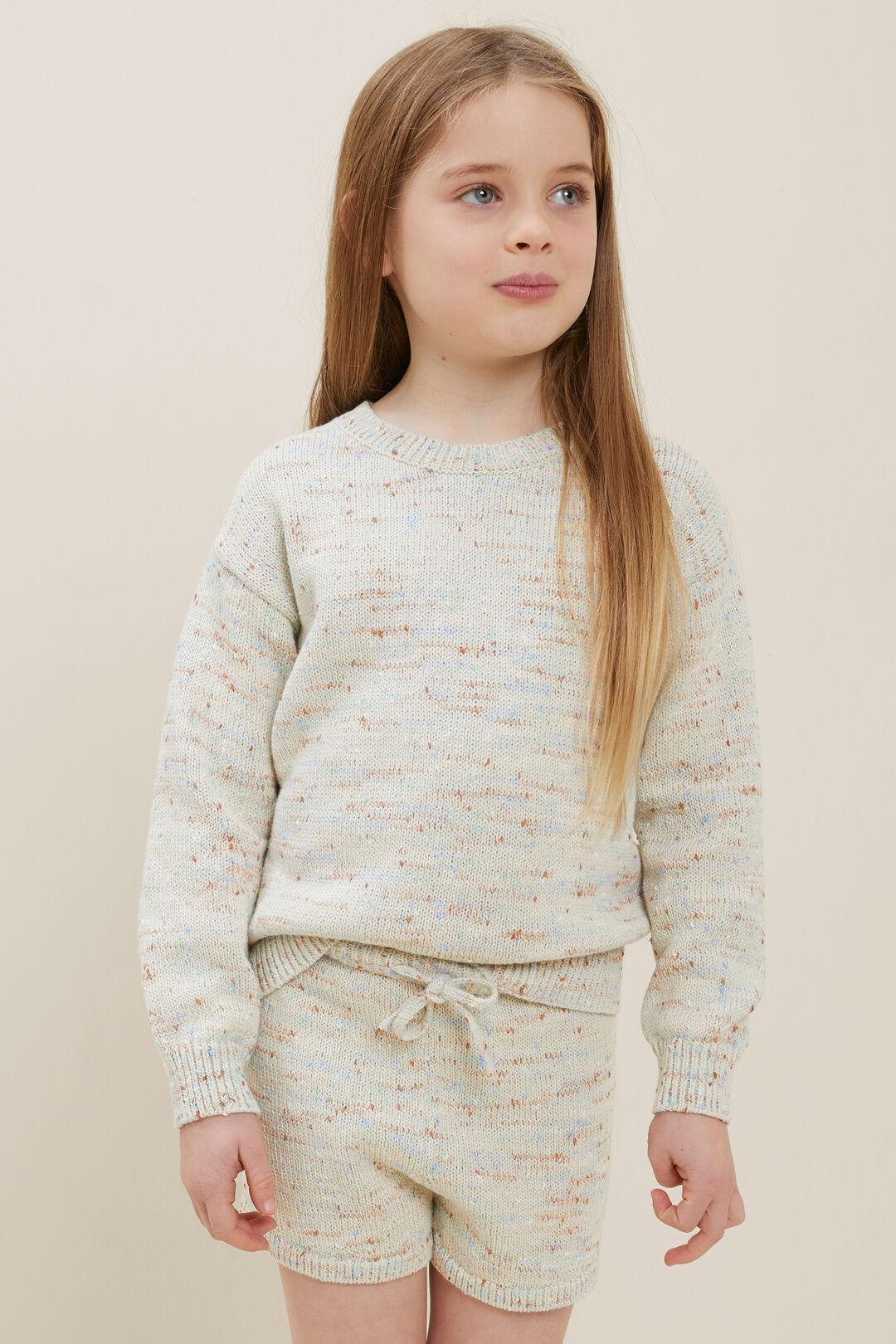 Speckle Knit Sweater  Multi  hi-res