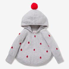 Ladybug Poncho  CLOUD  hi-res