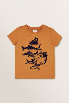 Shark Species Tee  PEANUT  hi-res